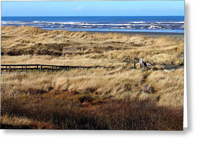 Greeting Card featuring the photograph Ocean Shores Boardwalk by Jeanette C Landstrom