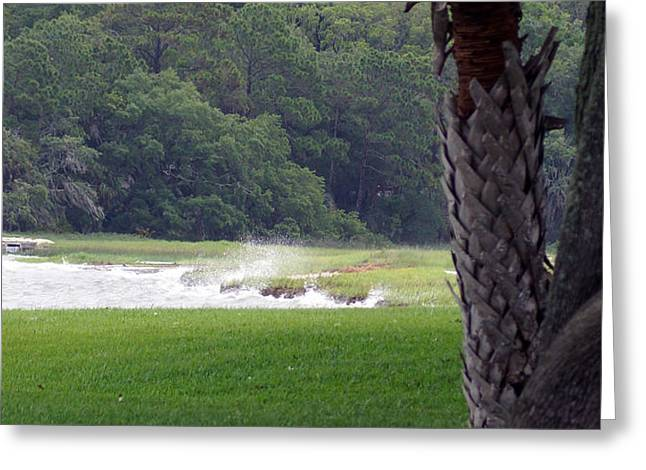 Ocean Spray At Hilton Head Island Greeting Card