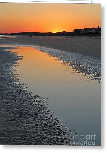 Ocean Tidal Pool Greeting Card