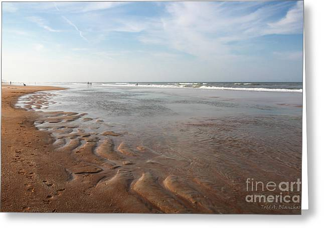 Greeting Card featuring the photograph Ocean Vista by Todd Blanchard