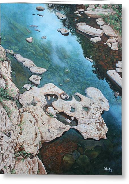 Ocoee River Low Tide Greeting Card by Mike Ivey
