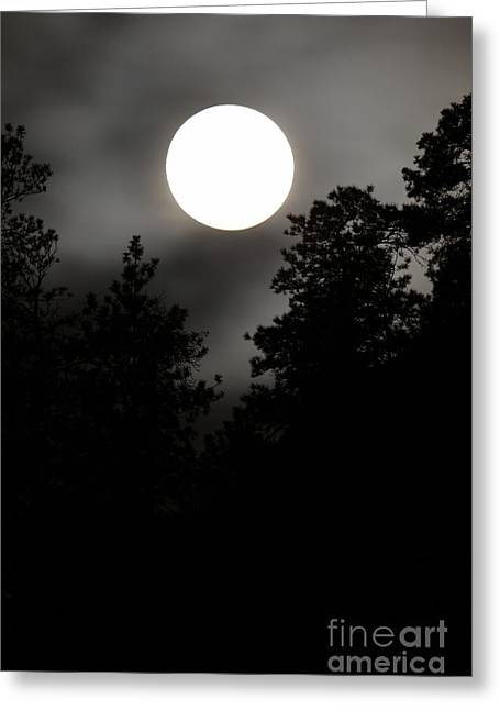 October Full Moon IIi Greeting Card by Phil Dionne
