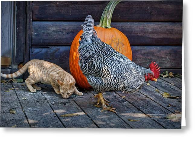 October Hunt Greeting Card by Nikolyn McDonald