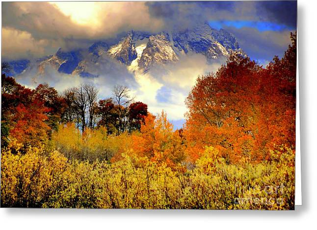 October In Grand Tetons Greeting Card by Irina Hays