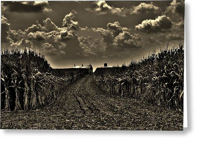 October Sky Greeting Card by Robert Geary