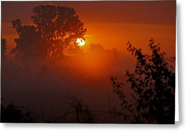 October Sunrise Greeting Card by Judy  Johnson