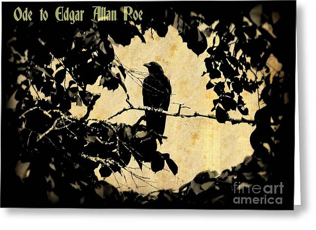 Ode To Poe Greeting Card by John Malone