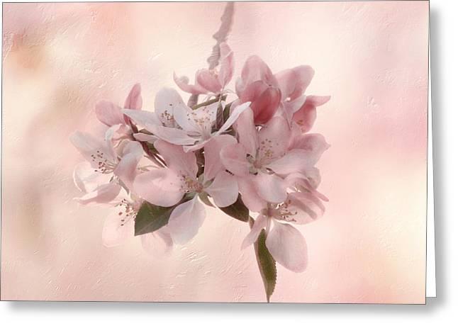 Ode To Spring Greeting Card