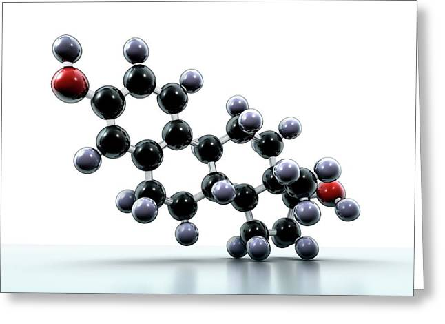 Oestradiol Hormone Molecule Greeting Card by Animate4.com/science Photo Libary