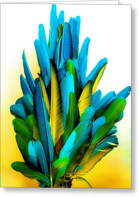 Yellow And Turquoise Greeting Card by Paulette Maffucci