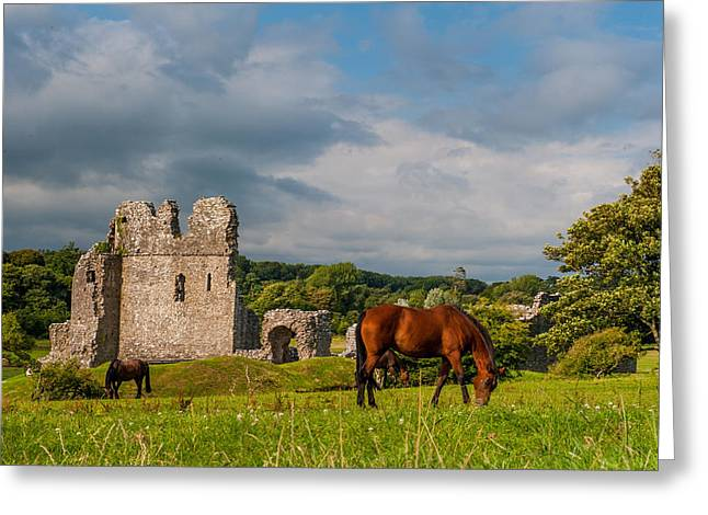 Ogmore Castle Greeting Card by David Ross