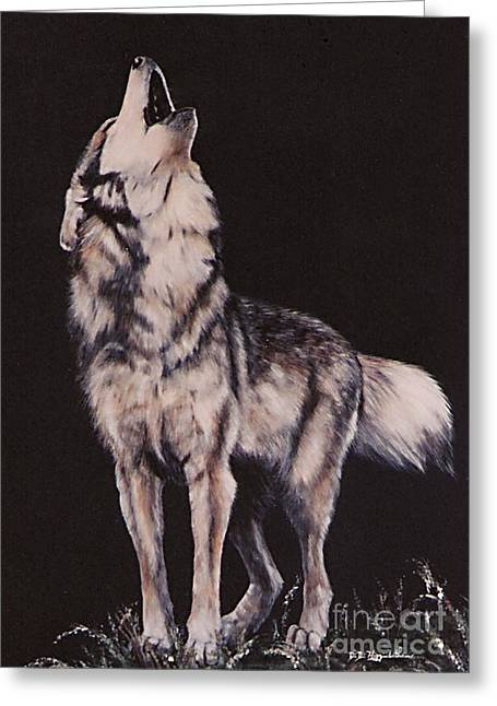 Oh No....coyote Art Greeting Card by DiDi Higginbotham