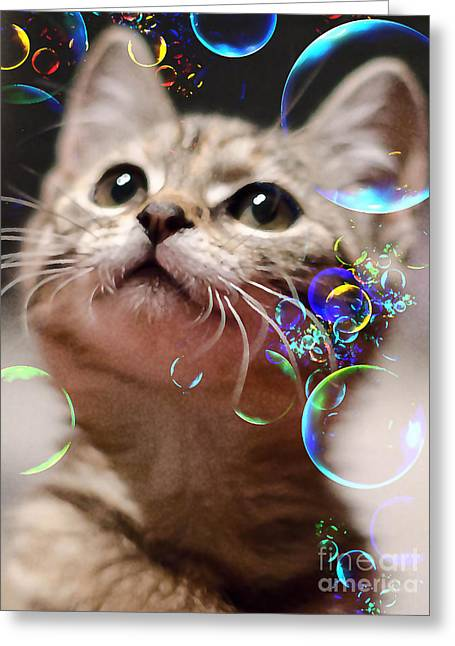 Oh What A Wonderful World Greeting Card by Klara Acel
