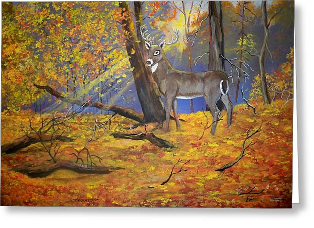 Ohio Buck Greeting Card