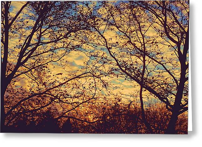 Ohio Election Day 2012 Sunset Greeting Card by Beth Akerman