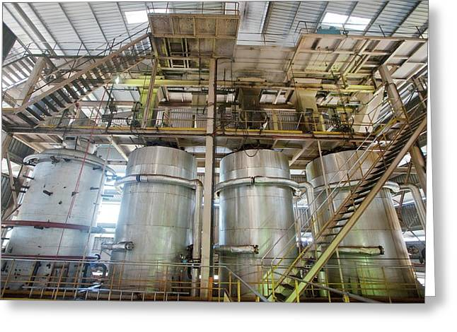 Oil Palm Processing Factory Greeting Card by Scubazoo/science Photo Library