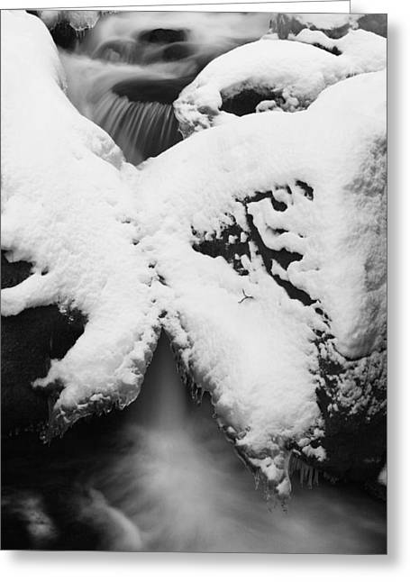 Oirase Gorge Stream In Winter Greeting Card