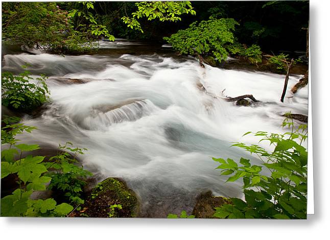 Oirase Stream Greeting Card