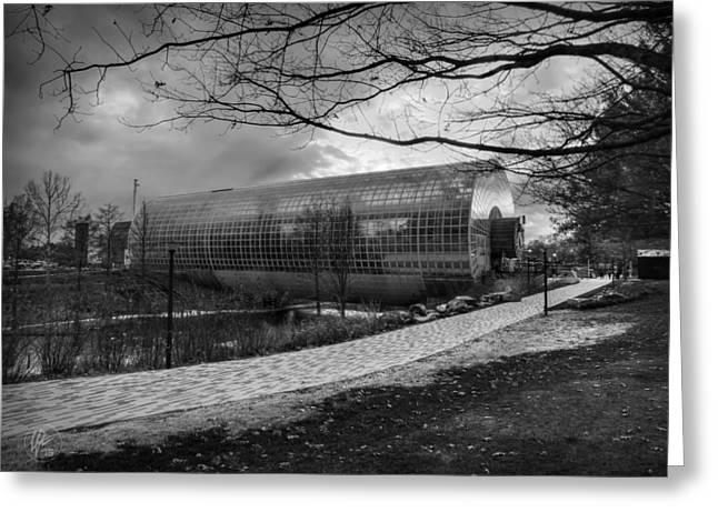 Okc Winter At Myriad Botanical Gardens 001 Bw Greeting Card by Lance Vaughn
