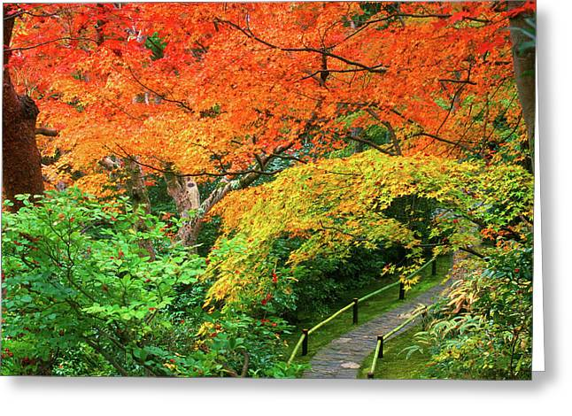 Okochi Sanso, Arashiyama, Kyoto, Japan Greeting Card by Rob Tilley