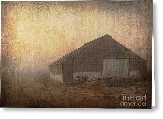 Old Barn 2 Greeting Card by Irina Hays