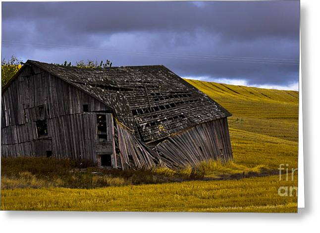 Old Barn Greeting Card by Camille Lyver