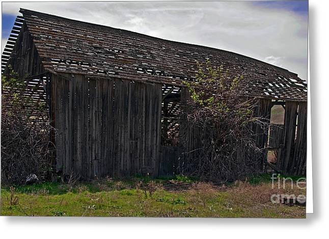 Old Barn In Country Landscape Art Prints Greeting Card