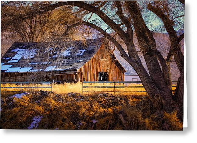 Old Barn In Sparks Greeting Card by Janis Knight