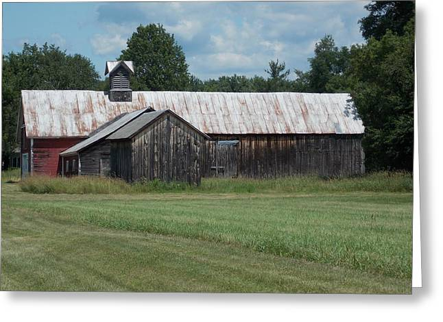 Old Barn In Vermont Greeting Card by Catherine Gagne