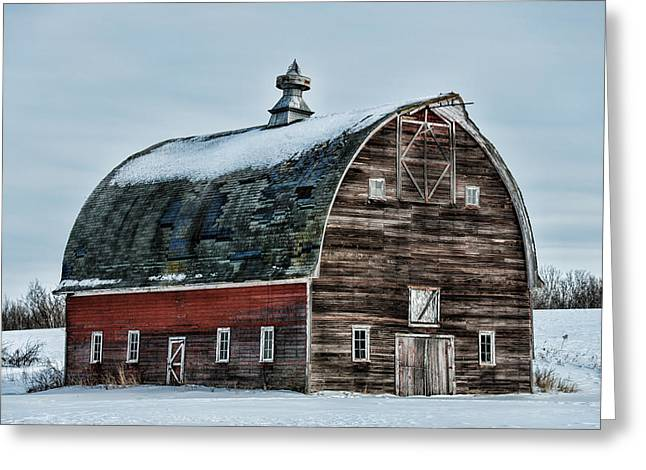 Old Barn Needs Paint Greeting Card by Paul Freidlund