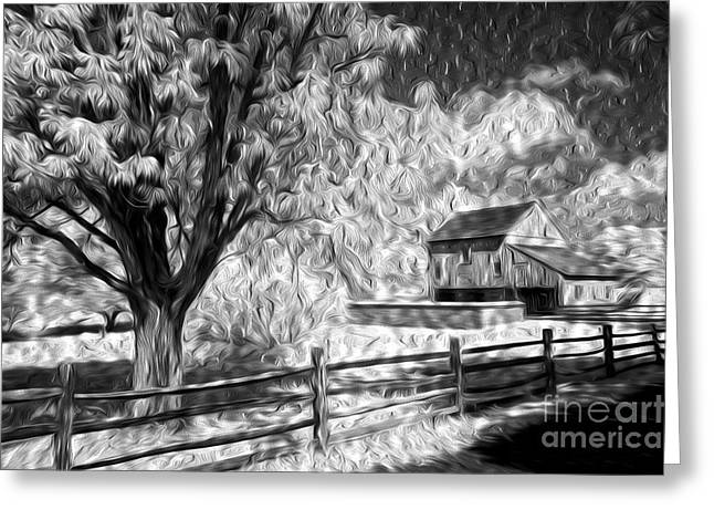 Old Barn - Old Tree Greeting Card by Paul W Faust -  Impressions of Light
