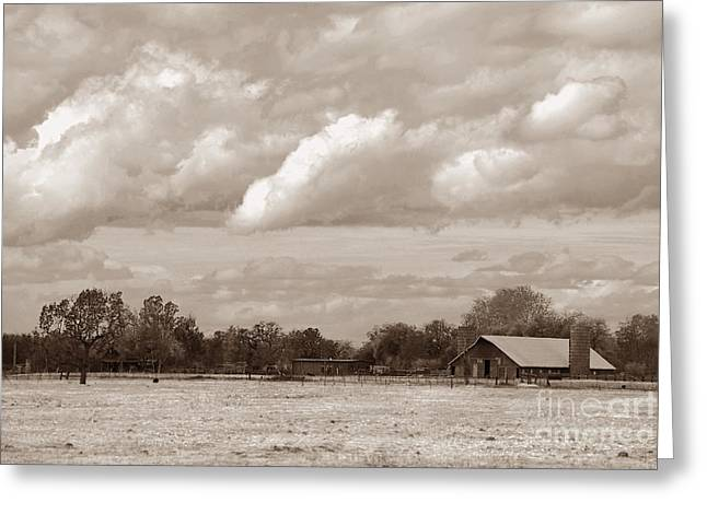 Old Barn On 99 Greeting Card
