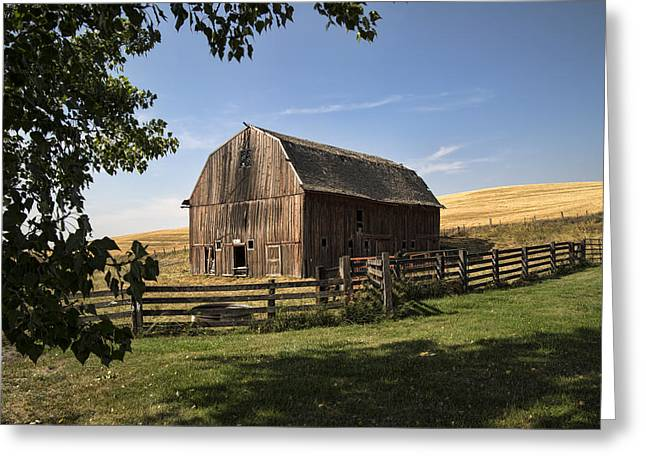 Old Barn On The Palouse Greeting Card