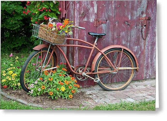 Old Bicycle With Flower Basket Next Greeting Card