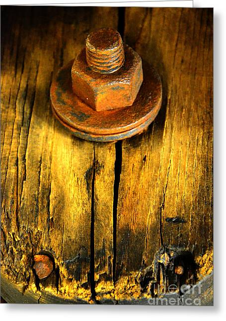 Old Bolt Greeting Card by Newel Hunter