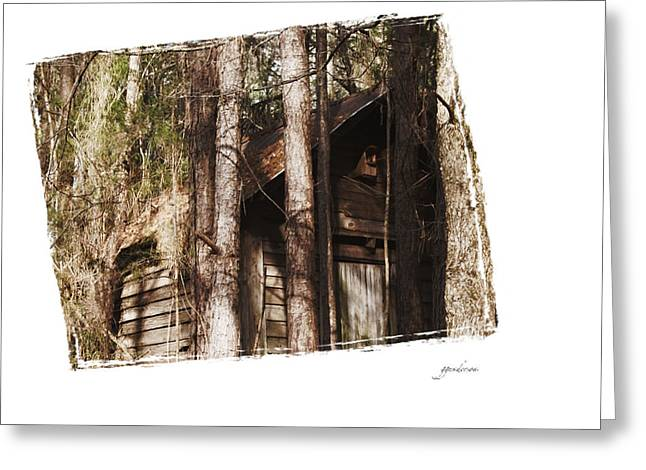 Old Cabin In Georga Greeting Card by Gary Gunderson