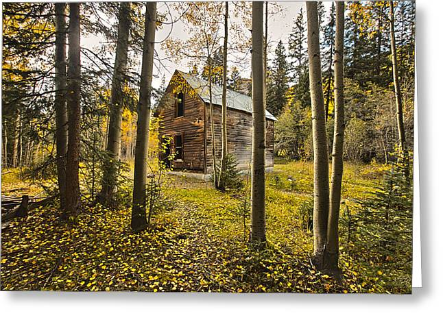 Old Cabin In Iron Town Colorado Greeting Card