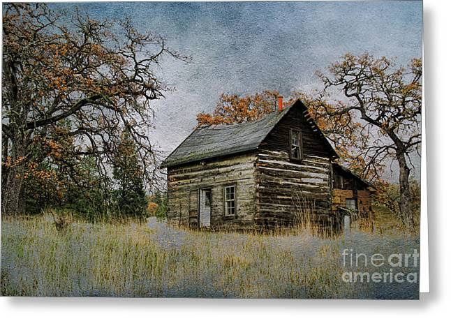 Old Cabin Greeting Card by Steve McKinzie