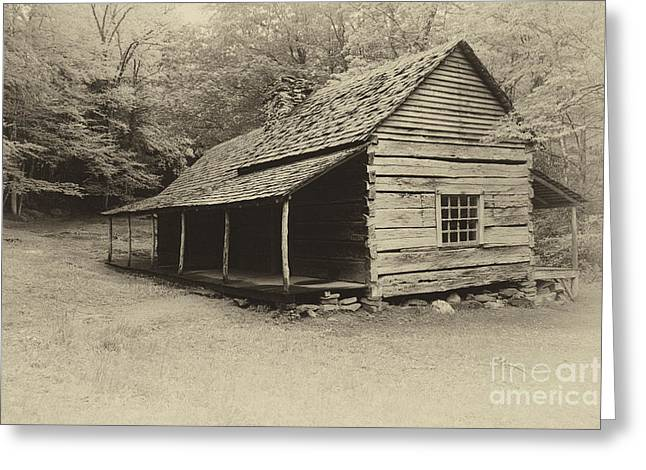 Old Cabin Greeting Card by Todd Bielby