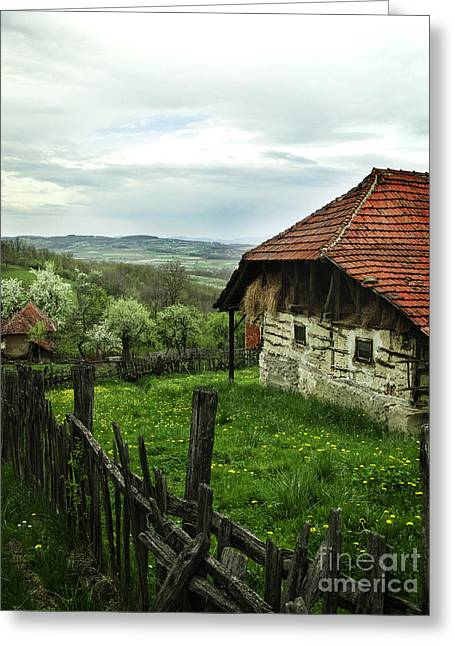 Old Cottage Greeting Card by Jelena Jovanovic