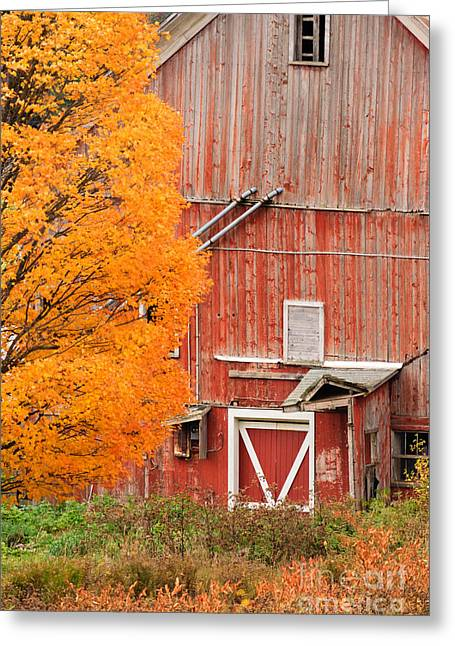 Old Dilapidated Country Barn During Autumn. Greeting Card