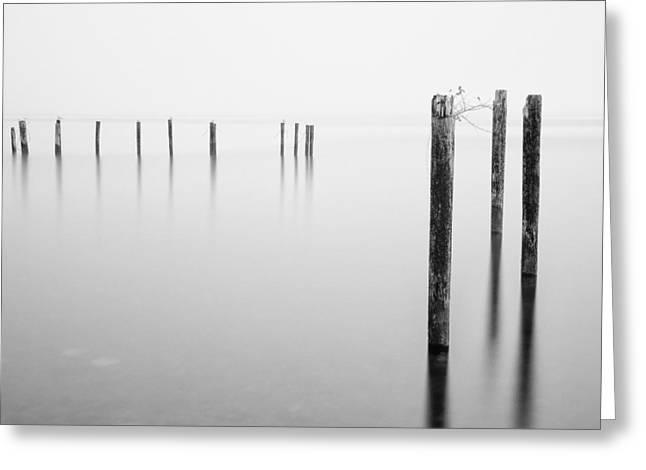 Old Dock Pilings - Puget Sound - Tacoma - Washington - January 2014 Greeting Card