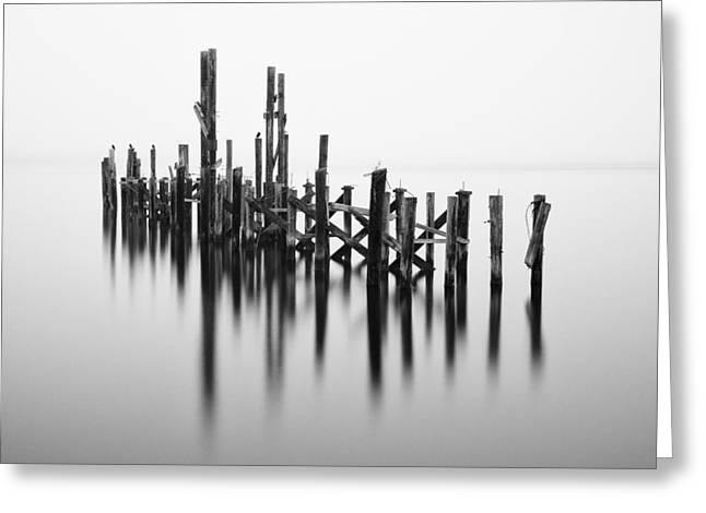 Old Dock Pilings - Tacoma - Washington - January 2014 Greeting Card