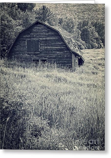 Old Falling Down Barn Blue Greeting Card