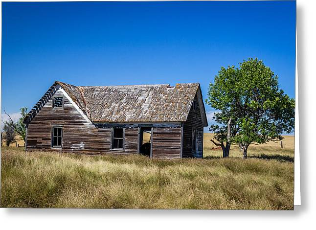 Old Farm House 1 Greeting Card by Chad Rowe