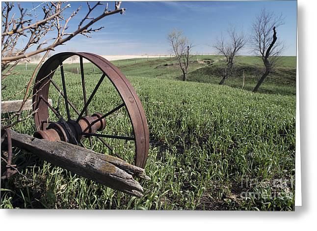 Old Farm Wagon Greeting Card by Art Whitton