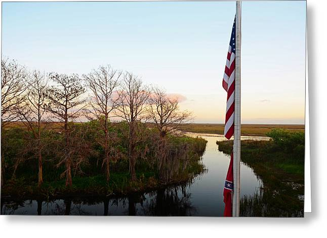 Old Glory And Cypress Greeting Card