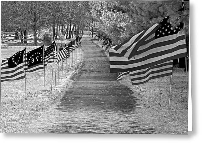 Old Glory Ir Greeting Card