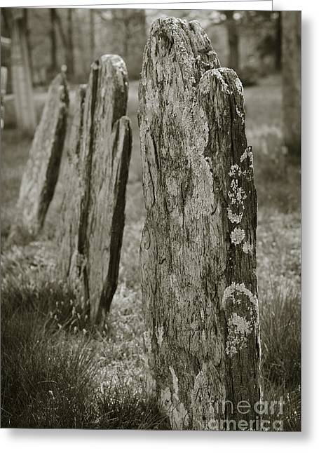 Old Gravestones I Greeting Card by Dave Gordon