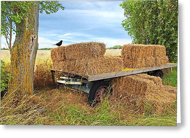 Old Hay Wagon Greeting Card by Gill Billington